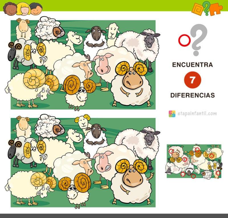 Encuentra 7 diferencias: Grupo de ovejas