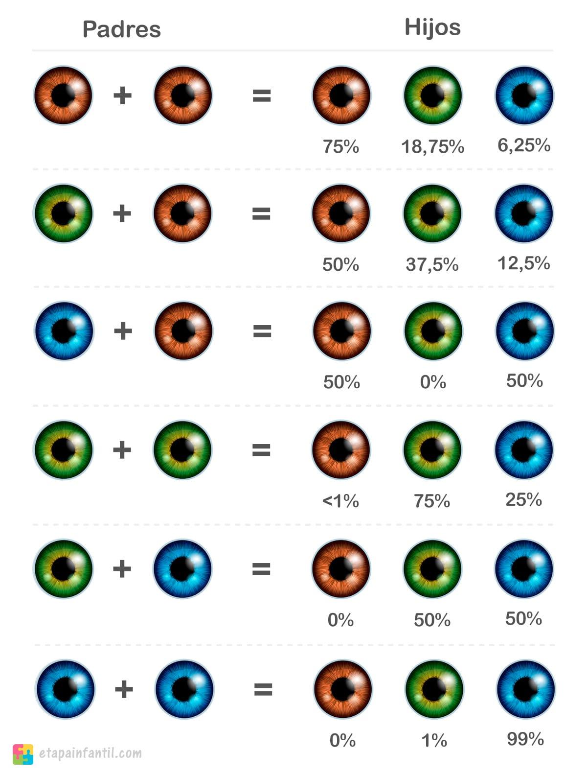 Calculadora de color de ojos del bebé